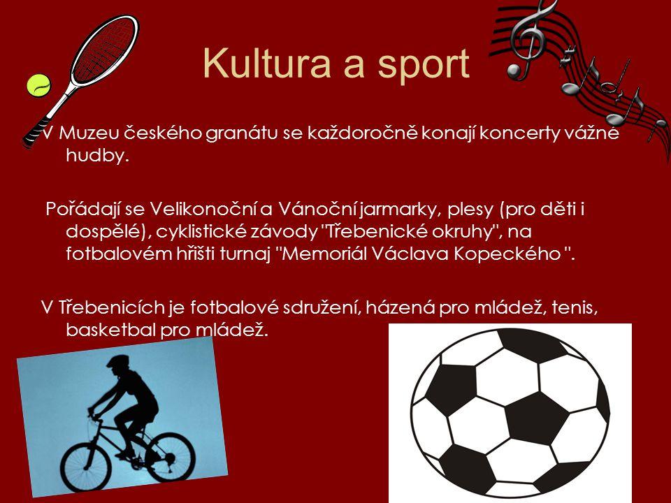 Kultura a sport V Muzeu českého granátu se každoročně konají koncerty vážné hudby.