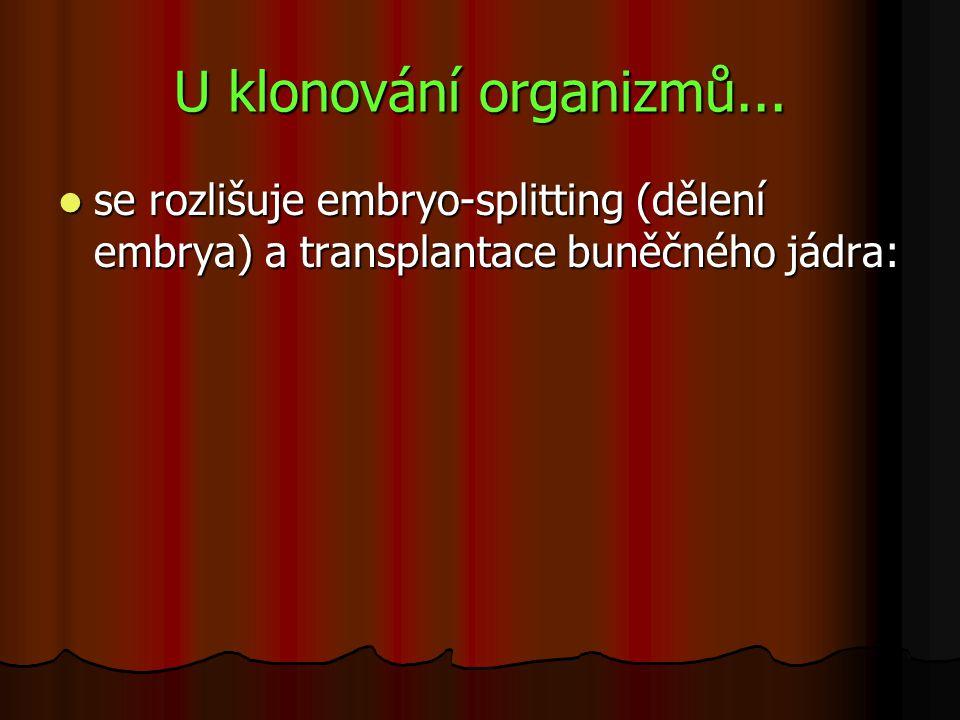 U klonování organizmů... se rozlišuje embryo-splitting (dělení embrya) a transplantace buněčného jádra: se rozlišuje embryo-splitting (dělení embrya)