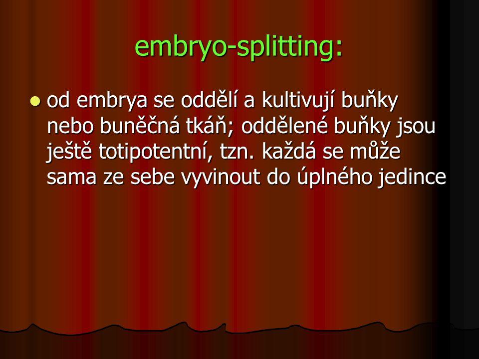 embryo-splitting: od embrya se oddělí a kultivují buňky nebo buněčná tkáň; oddělené buňky jsou ještě totipotentní, tzn. každá se může sama ze sebe vyv
