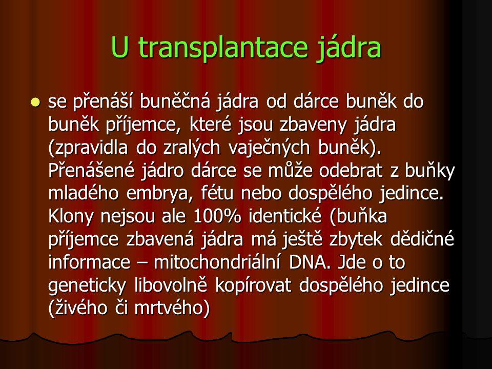 U transplantace jádra se přenáší buněčná jádra od dárce buněk do buněk příjemce, které jsou zbaveny jádra (zpravidla do zralých vaječných buněk). Přen
