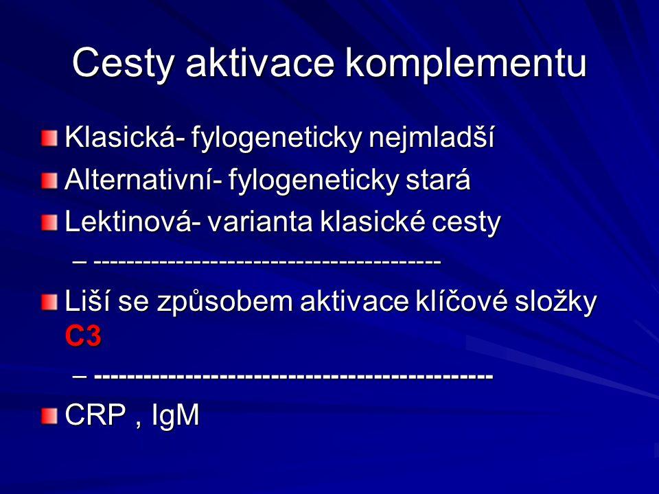 Cesty aktivace komplementu Klasická- fylogeneticky nejmladší Alternativní- fylogeneticky stará Lektinová- varianta klasické cesty –-------------------