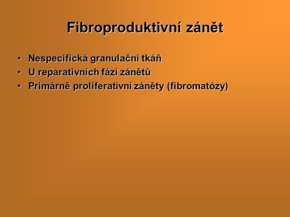 Fibroproduktivní zánět Nespecifická granulační tkáňNespecifická granulační tkáň U reparativních fází zánětůU reparativních fází zánětů Primárně prolif