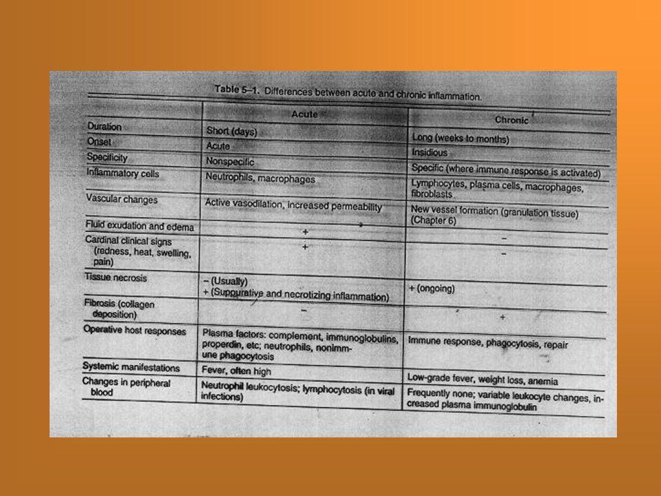 Zánět – mediátory Cytokiny (IL, IFN, TNF)Cytokiny (IL, IFN, TNF) Chemokiny (histamin)Chemokiny (histamin) IntegrinyIntegriny KomplementKomplement