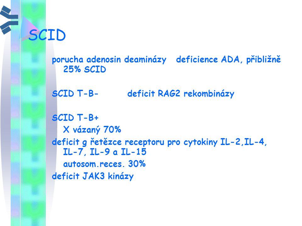 SCID porucha adenosin deaminázy deficience ADA, přibližně 25% SCID SCID T-B- deficit RAG2 rekombinázy SCID T-B+ X vázaný 70% deficit g řetězce recepto