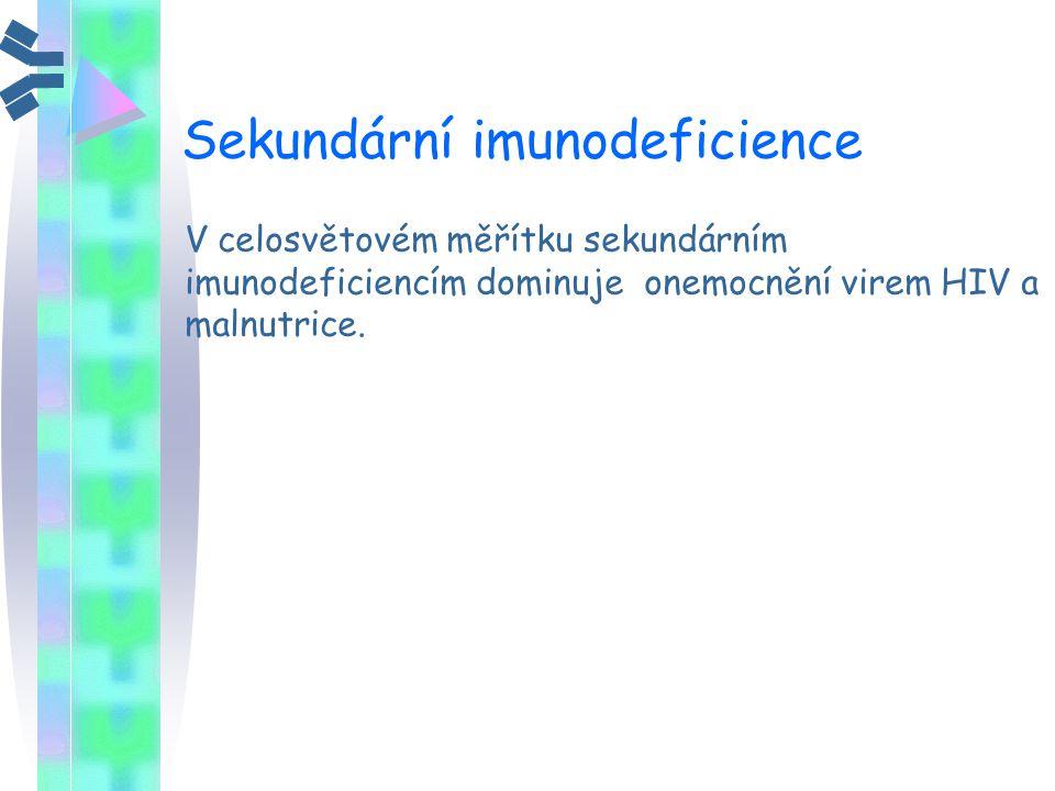 Sekundární imunodeficience V celosvětovém měřítku sekundárním imunodeficiencím dominuje onemocnění virem HIV a malnutrice.