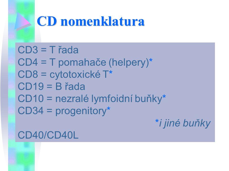 CD3 = T řada CD4 = T pomahače (helpery)* CD8 = cytotoxické T* CD19 = B řada CD10 = nezralé lymfoidní buňky* CD34 = progenitory* *i jiné buňky CD40/CD4