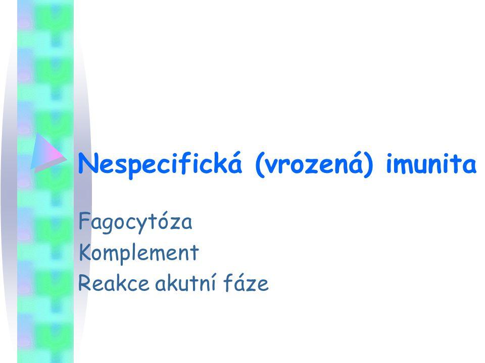 Nespecifická (vrozená) imunita Fagocytóza Komplement Reakce akutní fáze
