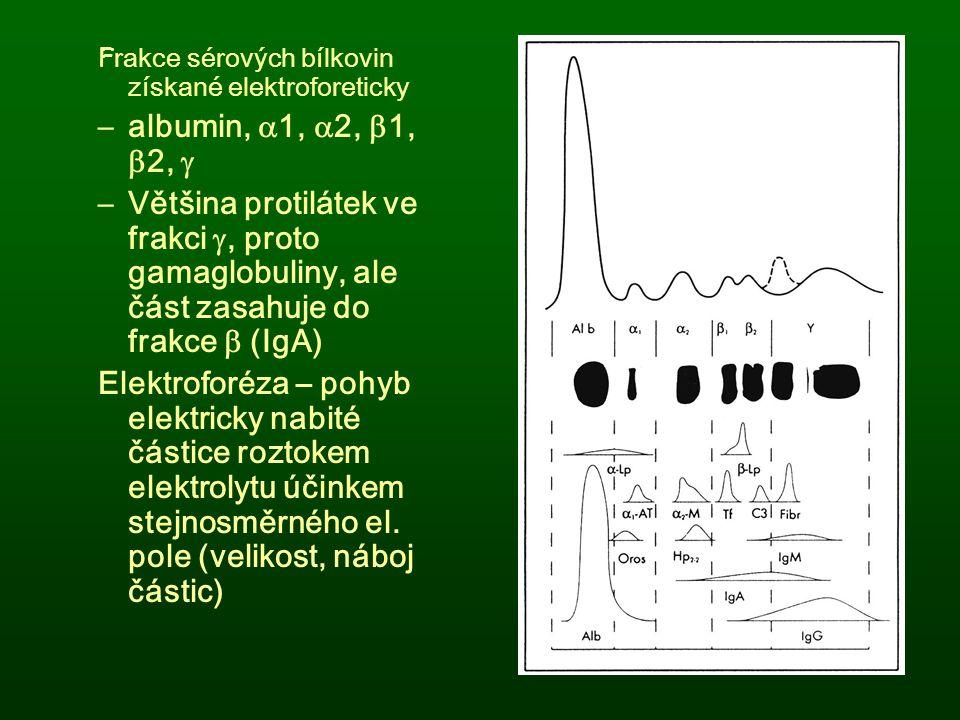 F rakce sérových bílkovin získané elektroforeticky –albumin,  1,  2,  1,  2,  –Většina protilátek ve frakci , proto gamaglobuliny, ale část zasa