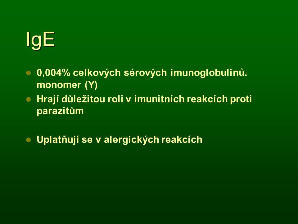 IgE 0,004% celkových sérových imunoglobulinů. monomer (Y) Hrají důležitou roli v imunitních reakcích proti parazitům Uplatňují se v alergických reakcí
