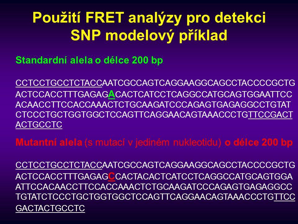 Použití FRET analýzy pro detekci SNP modelový příklad Standardní alela o délce 200 bp CCTCCTGCCTCTACCAATCGCCAGTCAGGAAGGCAGCCTACCCCGCTG ACTCCACCTTTGAGA