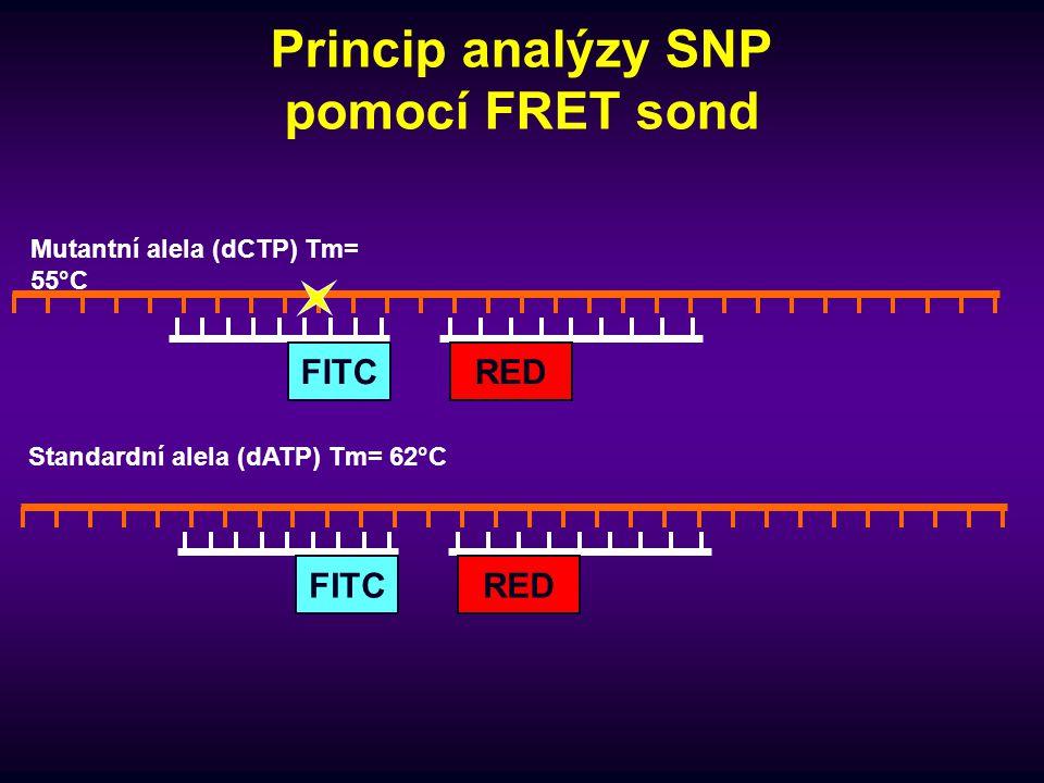 Princip analýzy SNP pomocí FRET sond REDFITC REDFITC Standardní alela (dATP) Tm= 62°C Mutantní alela (dCTP) Tm= 55°C