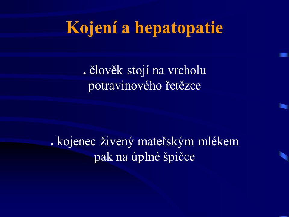 Kojení a hepatopatie. člověk stojí na vrcholu potravinového řetězce. kojenec živený mateřským mlékem pak na úplné špičce