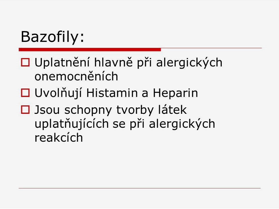 Bazofily:  Uplatnění hlavně při alergických onemocněních  Uvolňují Histamin a Heparin  Jsou schopny tvorby látek uplatňujících se při alergických reakcích