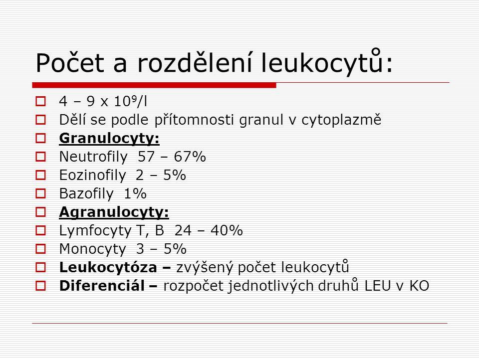 Počet a rozdělení leukocytů:  4 – 9 x 10 9 /l  Dělí se podle přítomnosti granul v cytoplazmě  Granulocyty:  Neutrofily 57 – 67%  Eozinofily 2 – 5%  Bazofily 1%  Agranulocyty:  Lymfocyty T, B 24 – 40%  Monocyty 3 – 5%  Leukocytóza – zvýšený počet leukocytů  Diferenciál – rozpočet jednotlivých druhů LEU v KO