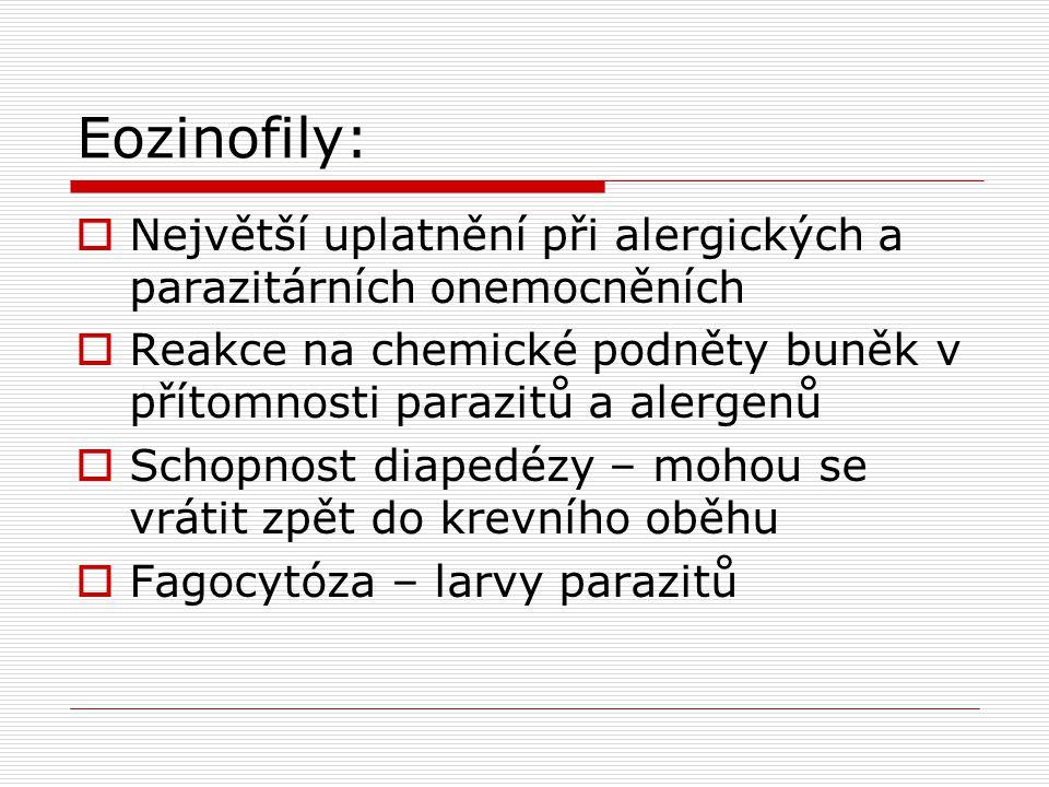 Eozinofily:  Největší uplatnění při alergických a parazitárních onemocněních  Reakce na chemické podněty buněk v přítomnosti parazitů a alergenů  Schopnost diapedézy – mohou se vrátit zpět do krevního oběhu  Fagocytóza – larvy parazitů