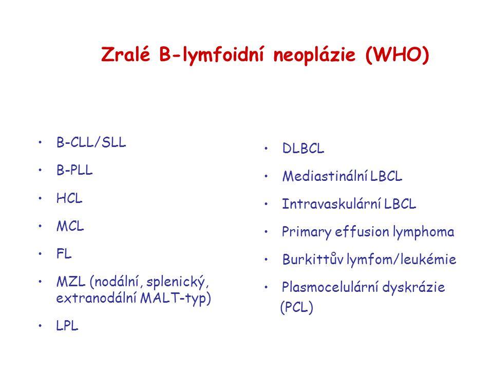 Zralé B-lymfoidní neoplázie (WHO)  B-CLL/SLL B-PLL HCL MCL FL MZL (nodální, splenický, extranodální MALT-typ)  LPL DLBCL Mediastinální LBCL Intravas
