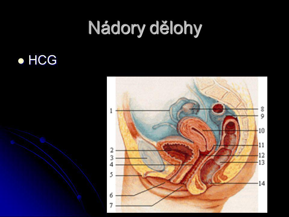 Nádory dělohy HCG HCG