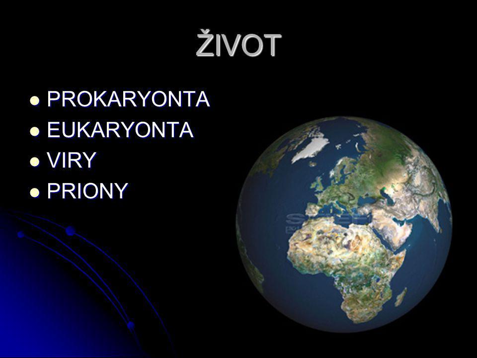 ŽIVOT PROKARYONTA PROKARYONTA EUKARYONTA EUKARYONTA VIRY VIRY PRIONY PRIONY