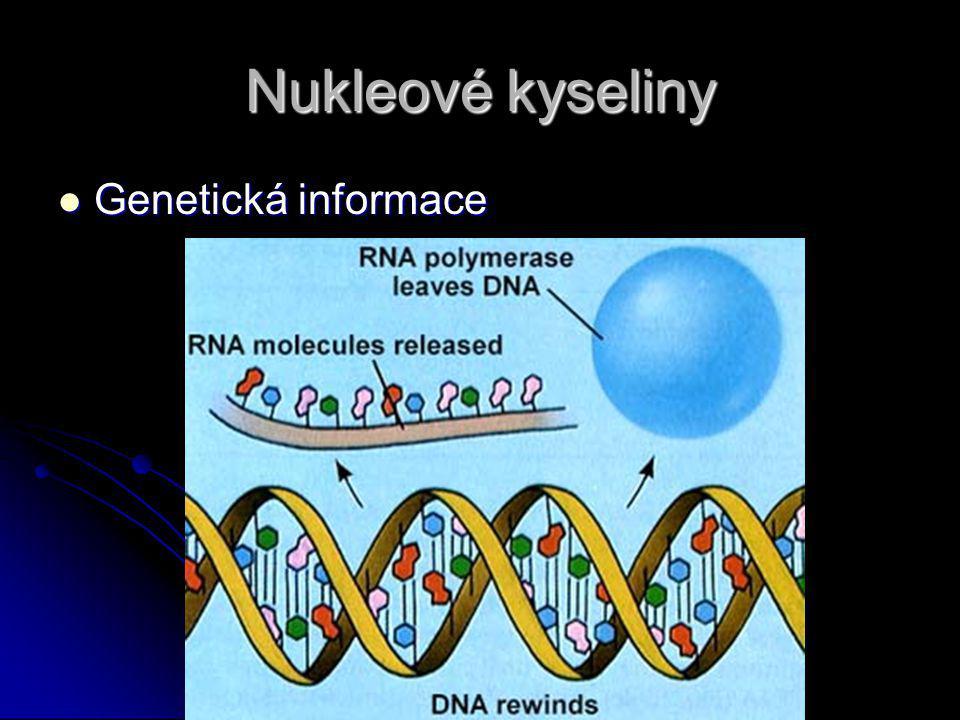 Nukleové kyseliny Genetická informace Genetická informace