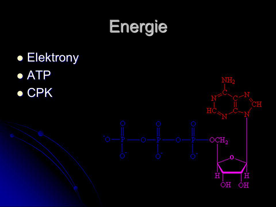 Energie Elektrony Elektrony ATP ATP CPK CPK