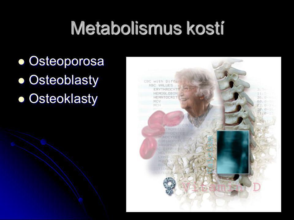 Metabolismus kostí Osteoporosa Osteoporosa Osteoblasty Osteoblasty Osteoklasty Osteoklasty