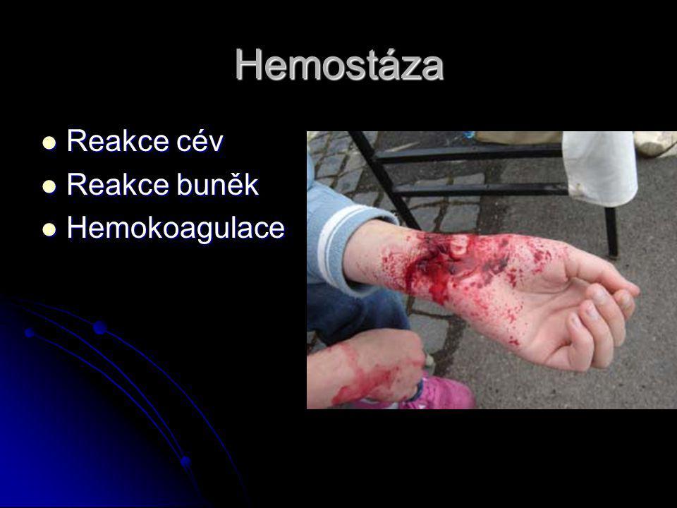 Hemostáza Reakce cév Reakce cév Reakce buněk Reakce buněk Hemokoagulace Hemokoagulace