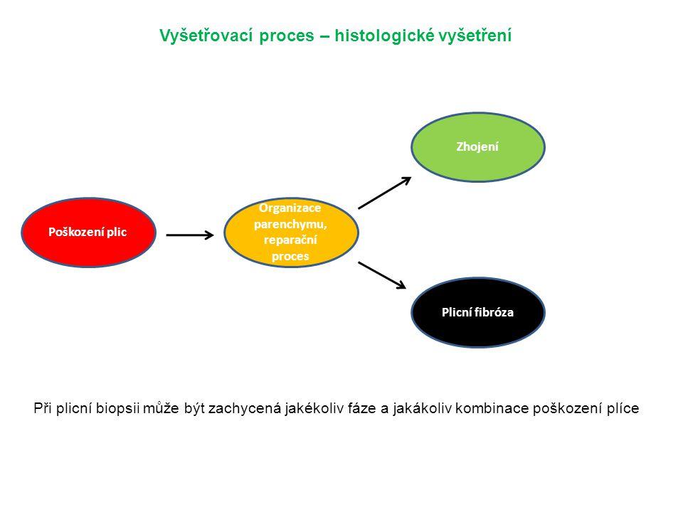 Vyšetřovací proces – histologické vyšetření Poškození plic Organizace parenchymu, reparační proces Zhojení Plicní fibróza Při plicní biopsii může být