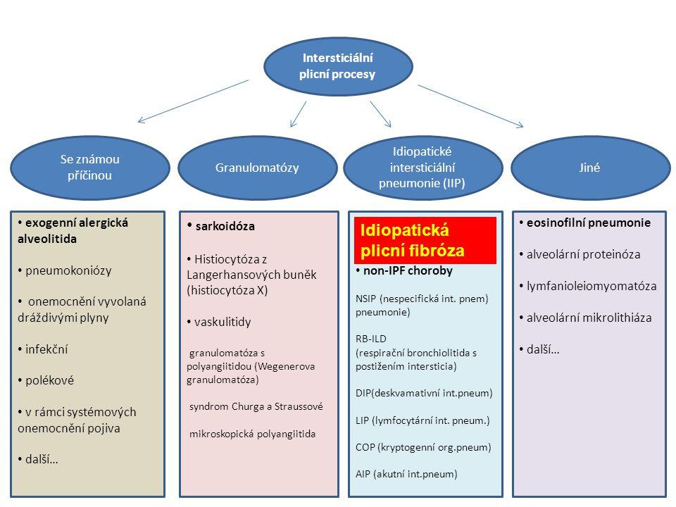 Intersticiální plicní procesy Idiopatické intersticiální pneumonie (IIP) JinéGranulomatózy Se známou příčinou exogenní alergická alveolitida pneumokon