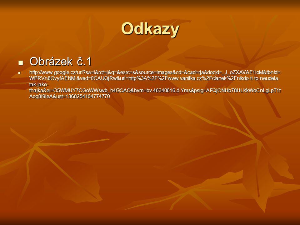 Odkazy Obrázek č.1 Obrázek č.1 http://www.google.cz/url?sa=i&rct=j&q=&esrc=s&source=images&cd=&cad=rja&docid=_J_oZXAVAE1loM&tbnid= WPRVn8GvyfAENM:&ved