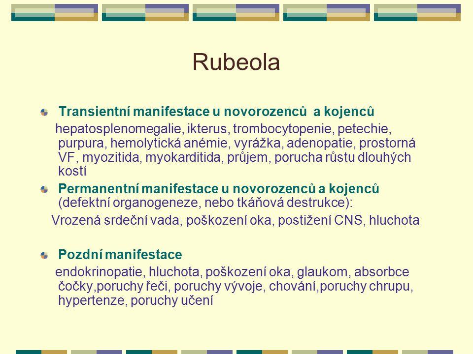 Rubeola Transientní manifestace u novorozenců a kojenců hepatosplenomegalie, ikterus, trombocytopenie, petechie, purpura, hemolytická anémie, vyrážka,