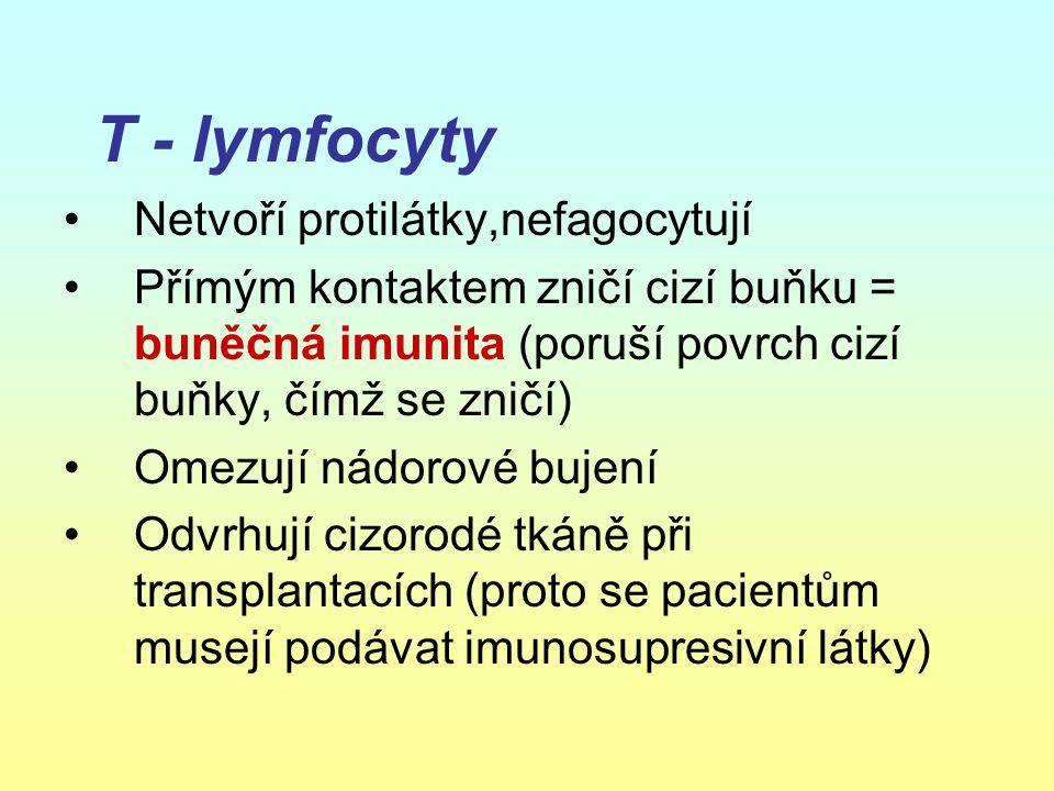 T - lymfocyty Netvoří protilátky,nefagocytují Přímým kontaktem zničí cizí buňku = buněčná imunita (poruší povrch cizí buňky, čímž se zničí) Omezují ná