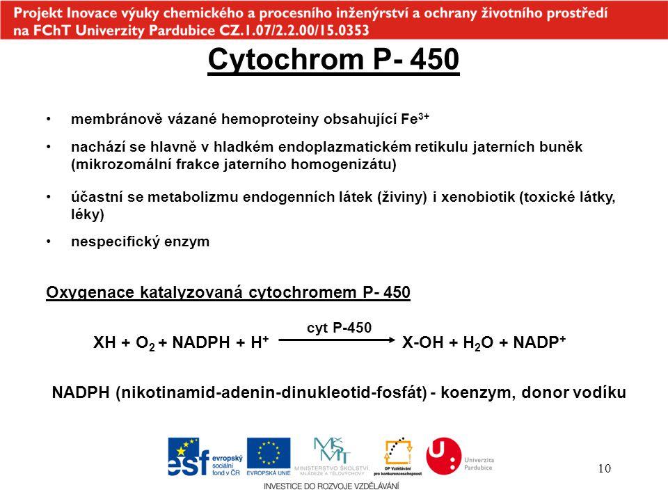 10 účastní se metabolizmu endogenních látek (živiny) i xenobiotik (toxické látky, léky) Cytochrom P- 450 membránově vázané hemoproteiny obsahující Fe