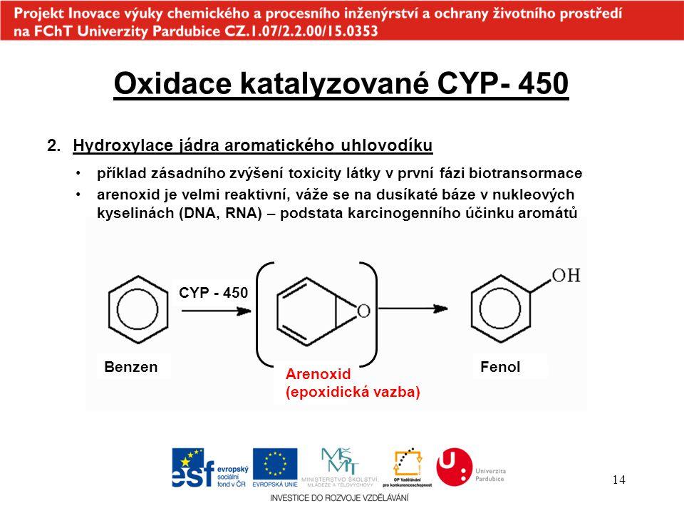 14 Oxidace katalyzované CYP- 450 2.Hydroxylace jádra aromatického uhlovodíku příklad zásadního zvýšení toxicity látky v první fázi biotransormace aren