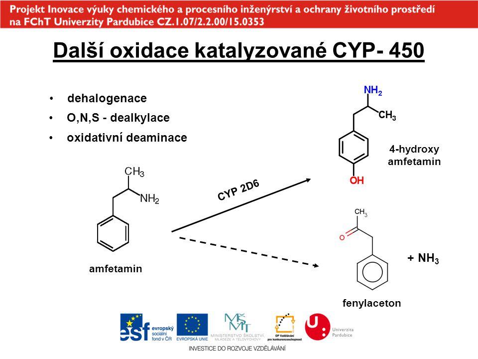 Další oxidace katalyzované CYP- 450 O,N,S - dealkylace oxidativní deaminace dehalogenace CYP 2D6 amfetamin 4-hydroxy amfetamin fenylaceton + NH 3