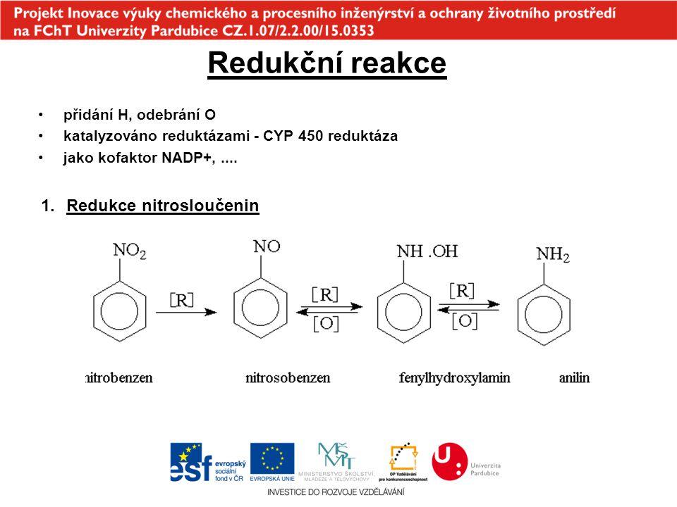 Redukční reakce přidání H, odebrání O katalyzováno reduktázami - CYP 450 reduktáza jako kofaktor NADP+,.... 1.Redukce nitrosloučenin