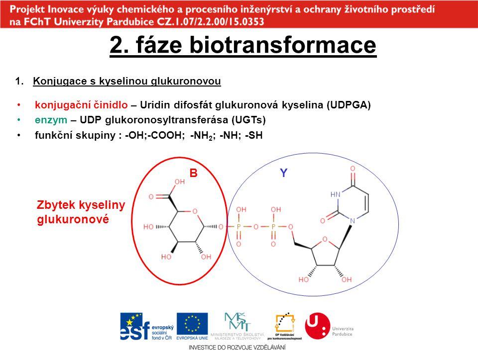 2. fáze biotransformace 1.Konjugace s kyselinou glukuronovou konjugační činidlo – Uridin difosfát glukuronová kyselina (UDPGA) enzym – UDP glukoronosy