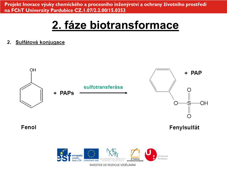 2. fáze biotransformace 2.Sulfátová konjugace Fenol + PAPs sulfotransferása + PAP Fenylsulfát