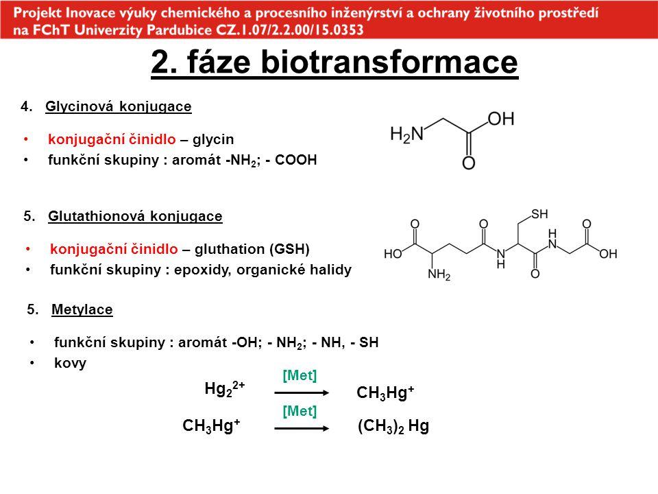 2. fáze biotransformace 4.Glycinová konjugace konjugační činidlo – glycin funkční skupiny : aromát -NH 2 ; - COOH 5.Glutathionová konjugace konjugační