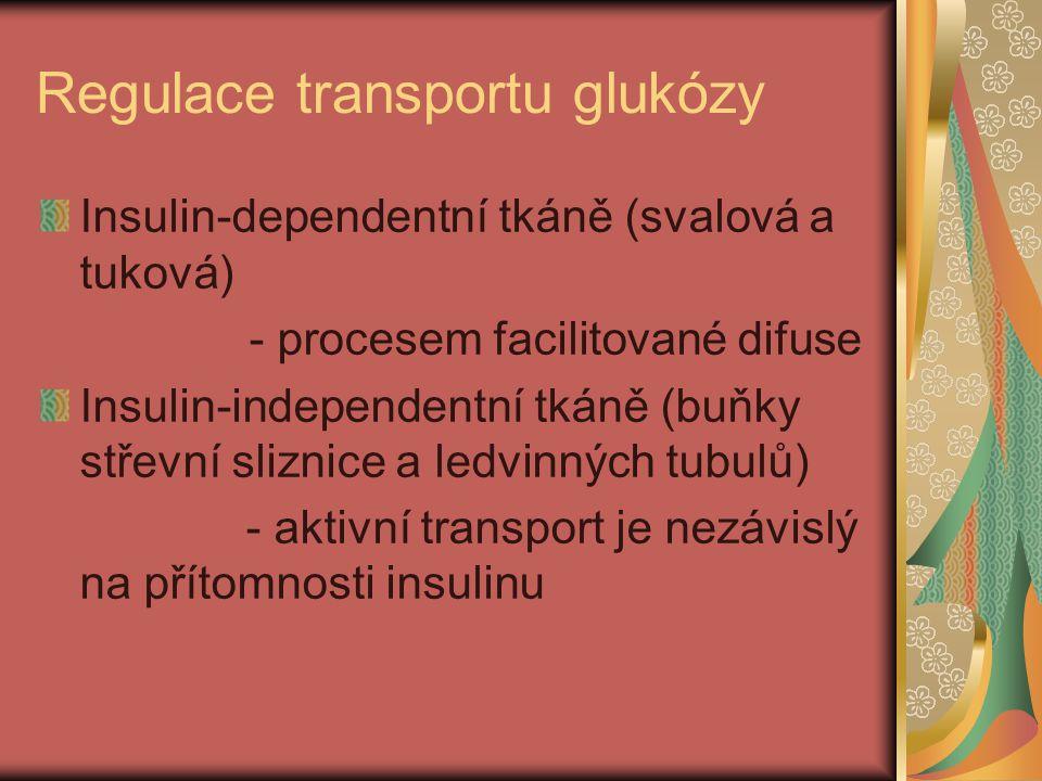 Regulace transportu glukózy Insulin-dependentní tkáně (svalová a tuková) - procesem facilitované difuse Insulin-independentní tkáně (buňky střevní sli