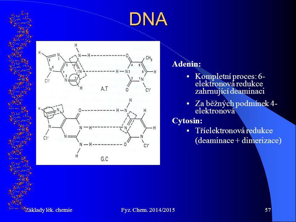 Základy lék. chemieFyz. Chem. 2014/201557DNA Adenin: Kompletní proces: 6- elektronová redukce zahrnující deaminaci Za běžných podmínek 4- elektronová
