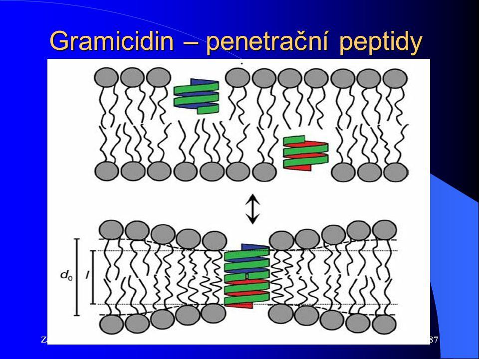 Základy lék. chemieFyz. Chem. 2014/201587 Gramicidin – penetrační peptidy