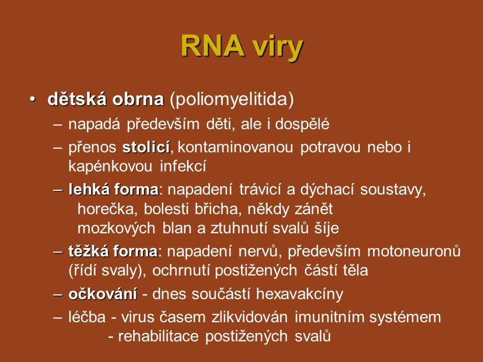 RNA viry dětská obrna