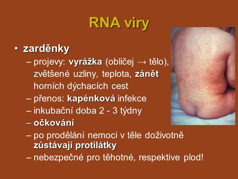 RNA viry chřipkachřipka –více typů virů, infekce různých hostitelů (savci i ptáci) –u člověka nejčastější typ A časté mutace → každoroční epidemie očkování (proti loňskému viru) –přenos kapénkovou infekcí –příznaky: horečka, bolesti hlavy, kloubů a svalů, kašel,...