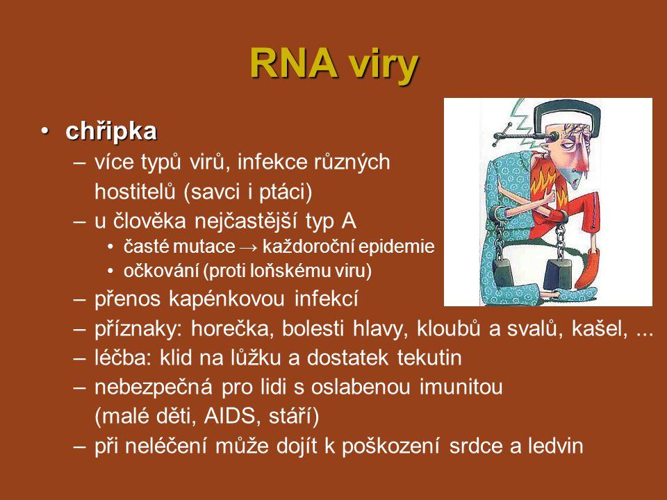 RNA viry slintavka a kulhavkaslintavka a kulhavka puchýře –onemocnění sudokopytníků - puchýře –silně infekční - přenos slinami, močí, trusem, mlékem, kontaktem –na člověka vzácně (nepasterizované mléko) –sekundární infekce –očkování –očkování pouze při epidemiích
