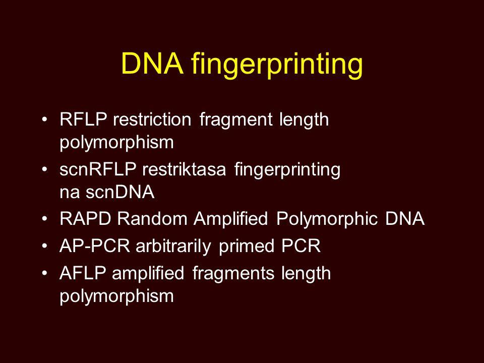 DNA fingerprinting RFLP restriction fragment length polymorphism scnRFLP restriktasa fingerprinting na scnDNA RAPD Random Amplified Polymorphic DNA AP-PCR arbitrarily primed PCR AFLP amplified fragments length polymorphism