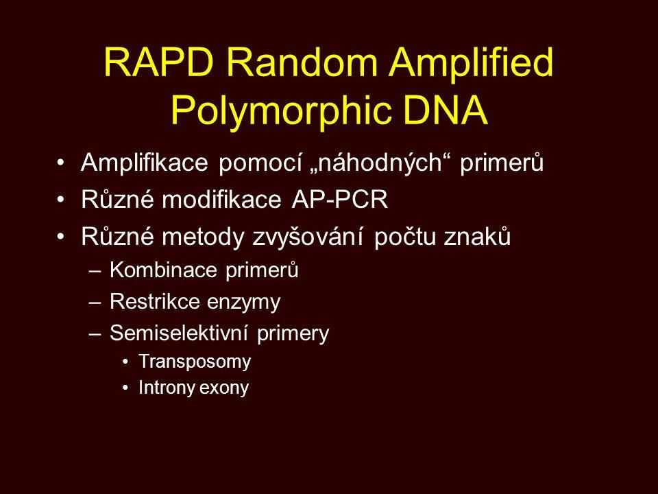 """RAPD Random Amplified Polymorphic DNA Amplifikace pomocí """"náhodných"""" primerů Různé modifikace AP-PCR Různé metody zvyšování počtu znaků –Kombinace pri"""