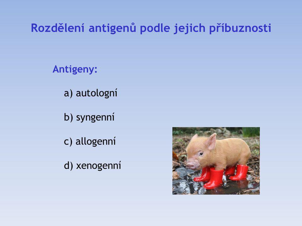 Rozdělení antigenů podle jejich příbuznosti Antigeny: a) autologní b) syngenní c) allogenní d) xenogenní