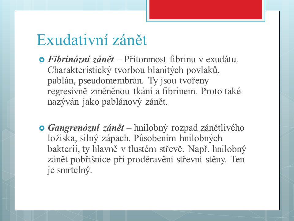 Exudativní zánět  Fibrinózní zánět – Přítomnost fibrinu v exudátu.