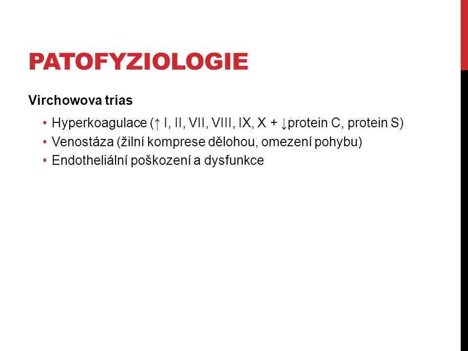 PATOFYZIOLOGIE Virchowova trias Hyperkoagulace (↑ I, II, VII, VIII, IX, X + ↓protein C, protein S) Venostáza (žilní komprese dělohou, omezení pohybu)