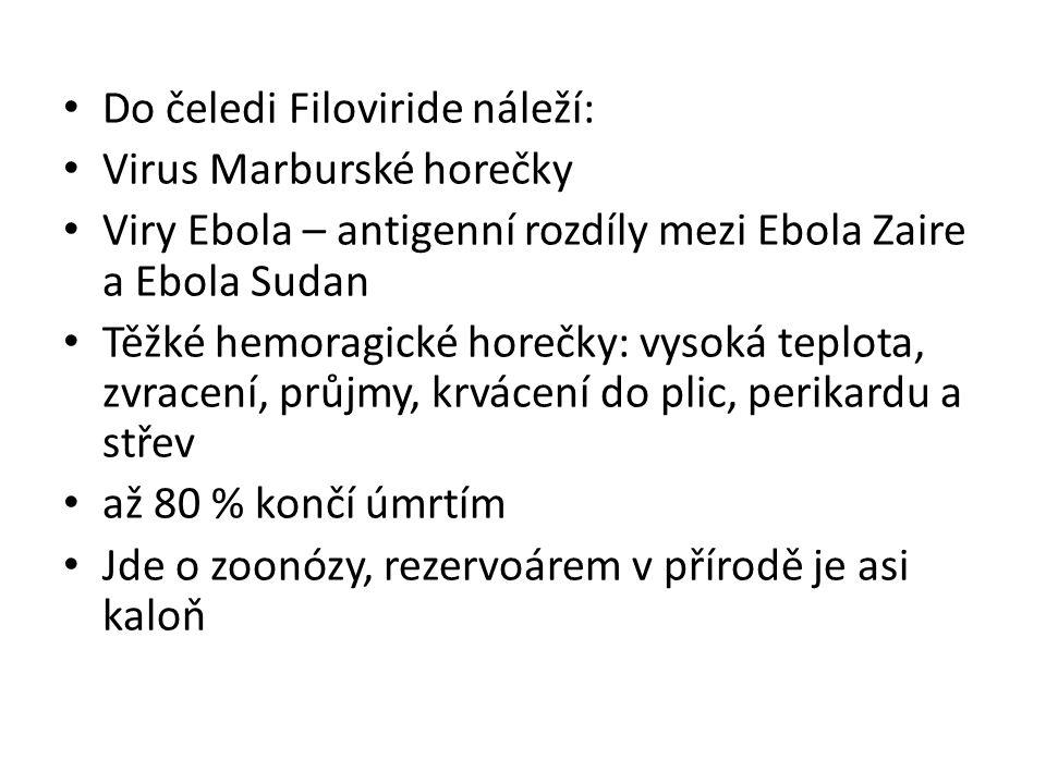 Do čeledi Filoviride náleží: Virus Marburské horečky Viry Ebola – antigenní rozdíly mezi Ebola Zaire a Ebola Sudan Těžké hemoragické horečky: vysoká t